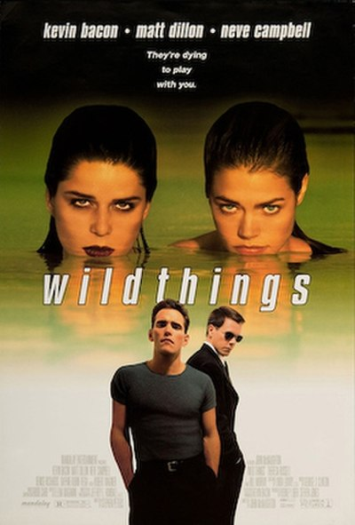 Picture of a movie: Wild Things