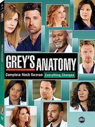 Grey's Anatomy (season 9) - Image: Grey's Anatomy Season 9 DVD