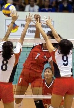 Volleyball at the 2005 Southeast Asian Games