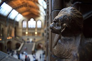 Shallow focus - A stone monkey at the Natural History Museum, London. The monkey is inside the plane of focus; the distant museum is outside the plane of focus.