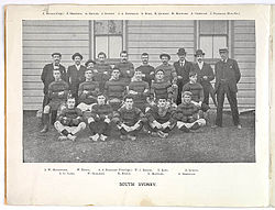 History Of The South Sydney Rabbitohs Wikipedia
