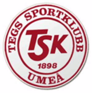 Tegs SK (ice hockey) - Image: Tegs SK