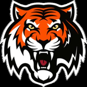 Amur Khabarovsk - Image: Amur Khabarovsk Logo
