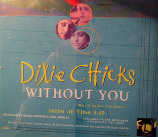 Without You (Dixie Chicks song) song by Dixie Chicks