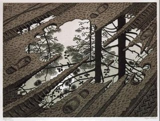 <i>Puddle</i> (M. C. Escher)
