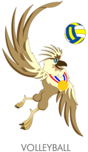 Volleyball at the 2005 Southeast Asian Games - Volleyball at the 2005 Southeast Asian Games logo