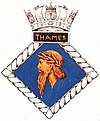 THAMES badge-1-.jpg