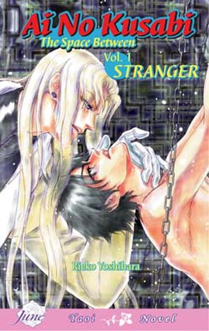 Ai no Kusabi - The English first volume of the novel, subtitled Stranger
