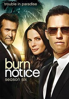<i>Burn Notice</i> (season 6)