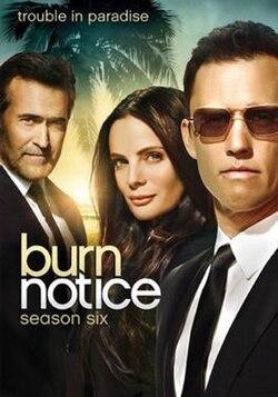 Burn Notice (season 6) - Wikipedia