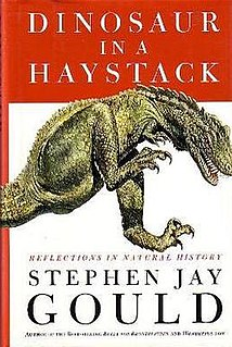 <i>Dinosaur in a Haystack</i> collection of essays by Stephen Jay Gould