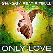 Only Love (Shaggy song) - Wikipedia