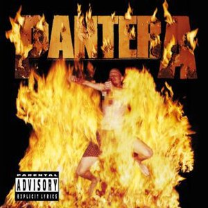 Reinventing the Steel - Image: Pantera Reinventing the Steel