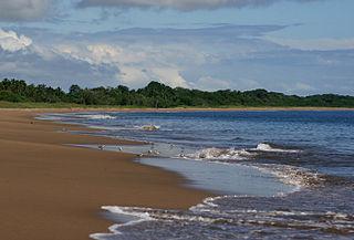 Pedasí District District in Los Santos Province, Panama