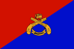 Sri Lanka Corps of Military Police - Image: SLCMP flag