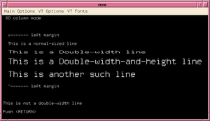 Vttest - Example showing VTTEST displaying doublesize characters in xterm.