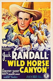 <i>Wild Horse Canyon</i> 1938 film directed by Robert F. Hill