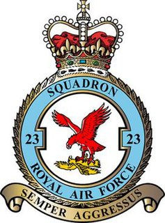 No. 23 Squadron RAF Defunct flying squadron of the Royal Air Force