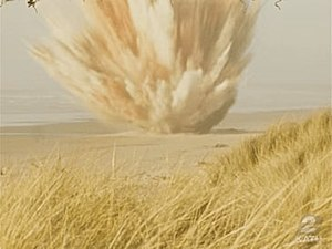 Exploding whale - Dynamite was used to blow up a rotting beached whale, with unintended consequences.
