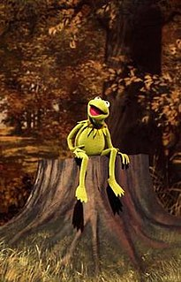 Bein Green 1970 song written by Joe Raposo, originally performed by Jim Henson as Kermit the Frog