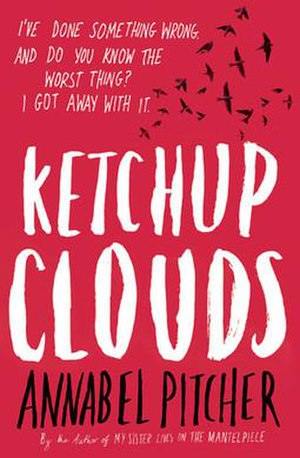Ketchup Clouds - Image: Ketchup Clouds (Pitcher novel)