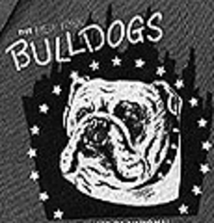 New York Yanks - Image: New York Bulldogs 1949