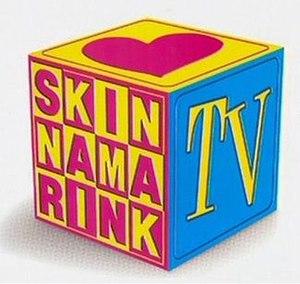 Skinnamarink TV - Image: SKT Vlogo