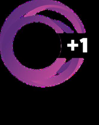 TVNZ 2 - Image: TVNZ 2 +1 logo