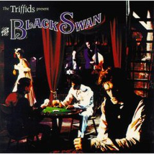 The Black Swan (The Triffids album) - Image: The Black Swan (The Triffids album)