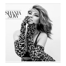 Shania Twain - Now (Official Album Cover).png