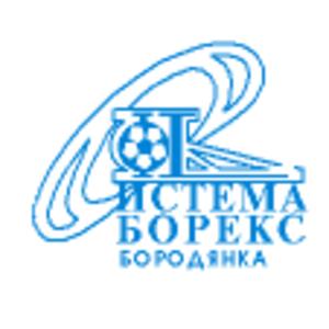 FC Systema-Boreks Borodianka - Emblem of System-Boreks Borodianka