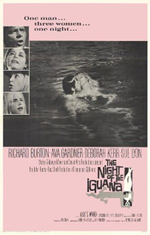 The Night of the Iguana (film) - theatrical release poster by Howard Terpning