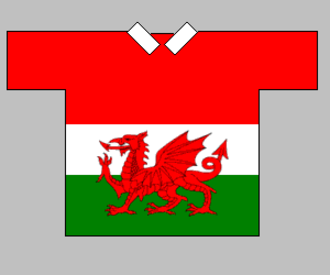 Wales national rugby league team - Wales team shirt used in the 2000 World Cup.