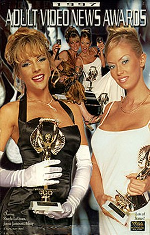 14th AVN Awards - 1997 AVN Awards Show VHS box cover
