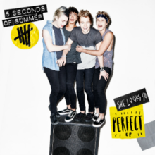 5 Seconds Of Summer She Looks So Perfect Png