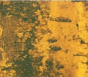 Aurora (Esmerine album) - Image: Aurora (Esmerine album)