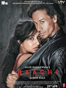 Baaghi: Un rebel pentru dragoste