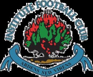 Institute F.C. Association football club in Northern Ireland
