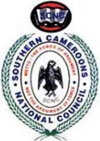 Logo of SCNC.png