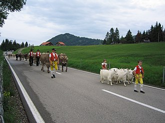 Appenzell - Seasonal rotation of herding to higher or lower pastures in Appenzell
