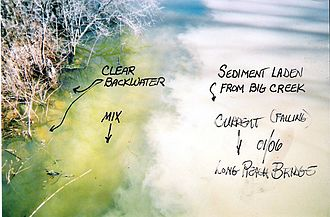 Cache River (Illinois) - Sedimentation resulting from diversion and erosion