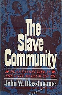 <i>The Slave Community</i> book by John Wesley Blassingame