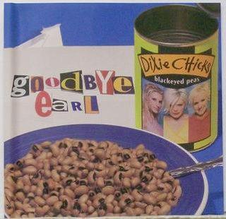 Goodbye Earl 2000 single by Dixie Chicks