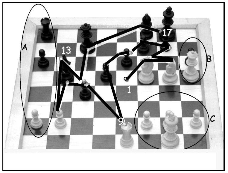 Eye movements of a chess champion nc