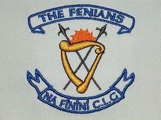 Fenians Johnstown GAA gaelic games club in County Kilkenny, Ireland