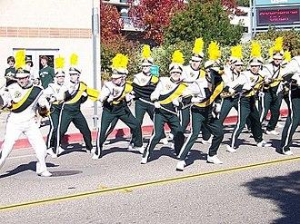 Mustang Band - Image: N6413888 31705070 1839