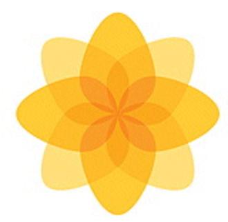 "History of Plaid Cymru - ""Plaid Cymru Logo"""