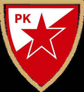 RK Crvena zvezda Serbian handball club