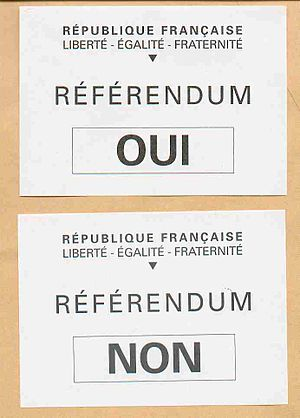 French European Constitution referendum, 2005 - Ballots for the referendum.