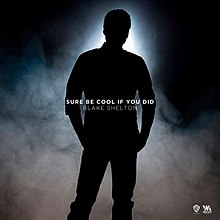 Blake Shelton - Sure Be Cool If You Did (studio acapella)